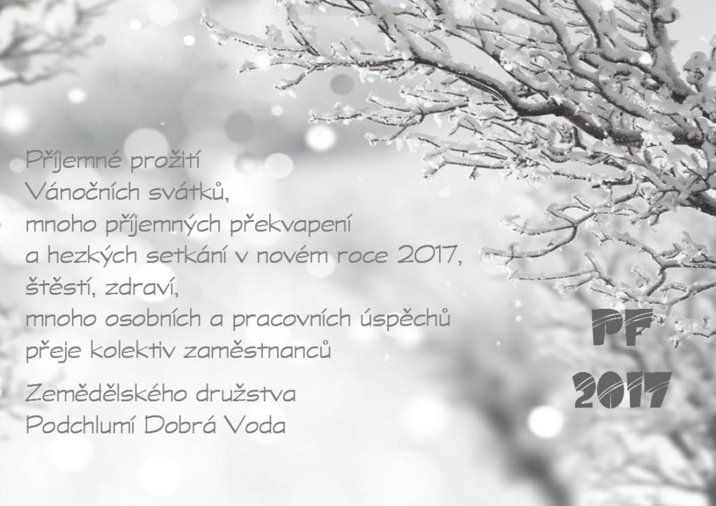Novoročenka 2017 c